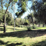 Actual parque por donde pasaba el acueducto